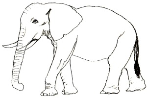 Как нарисовать слона карадашом?